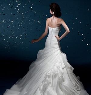 varianty-svadebnyh-platev-dlya-znakov-zodiaka