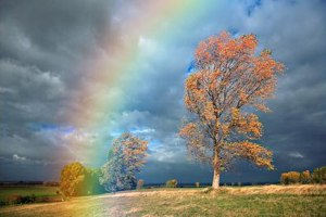 pogoda-i-goroskop-prognoz-pogody-na-vesnu-2014-goda-dlya-ukrainy