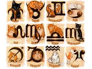 koshachij-zodiak